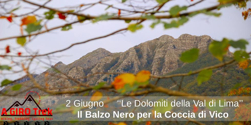 The Black Leap for Vico's Coccia
