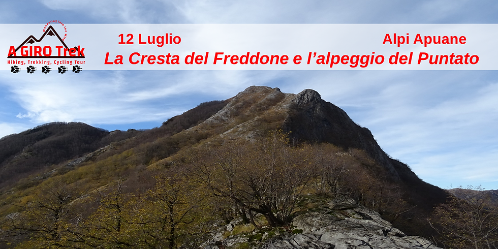 La Cresta del Freddone e l'alpeggio del Puntato