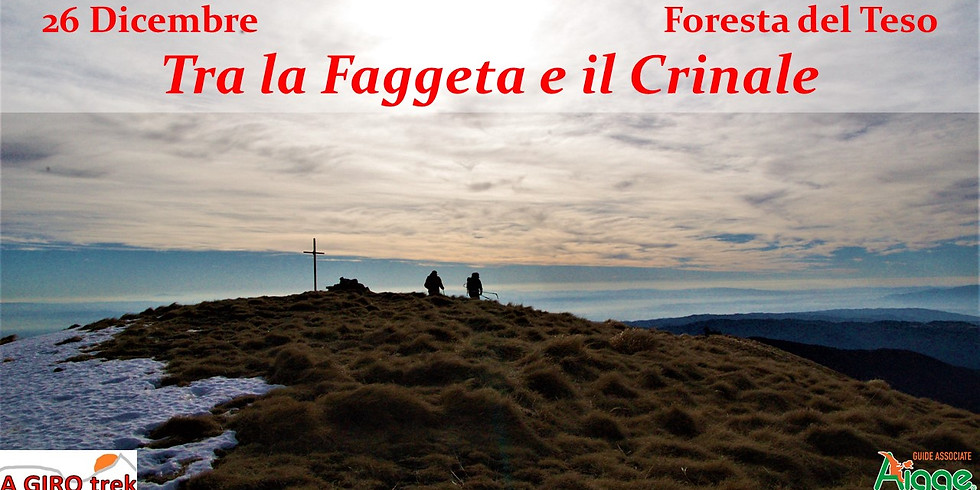 Between the Faggeta and the Crinale