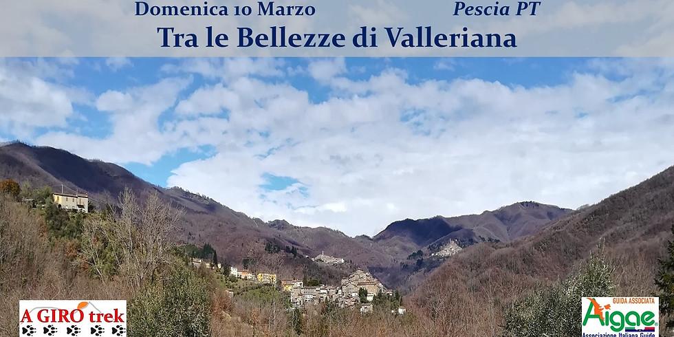 Tra le Bellezze di Valleriana