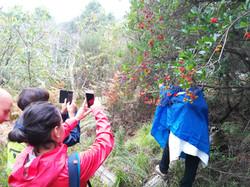 fotografare l'ambiente