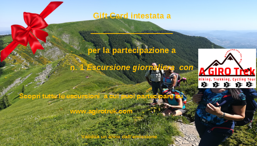 gift card 1 escursione.png