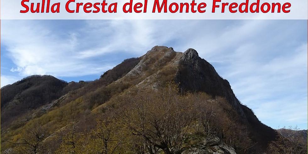 Sulla Cresta del Monte Freddone