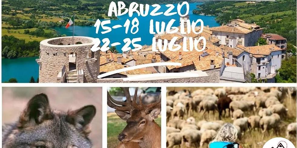 Orsi, Lupi, Camosci Trekking al Parco Nazionale d'Abruzzo