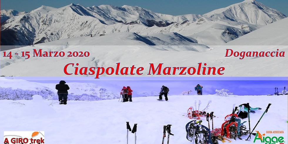 Snowshoeing Marzoline