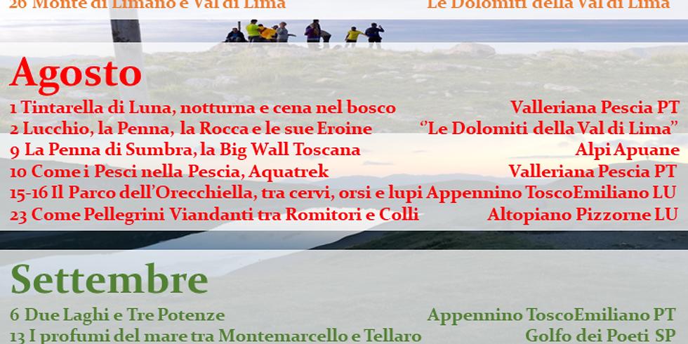 Programma Escursioni #summer2020