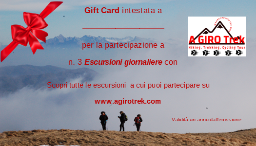 gift card 3 escursioni.png