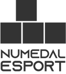 NE280920_LOGO_transparent_gray.png