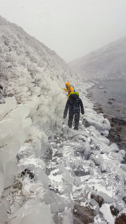 吹雪の九重山で出会った氷の芸術