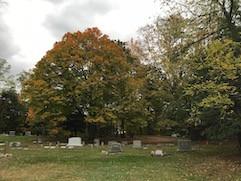 _cemetery_2.jpg