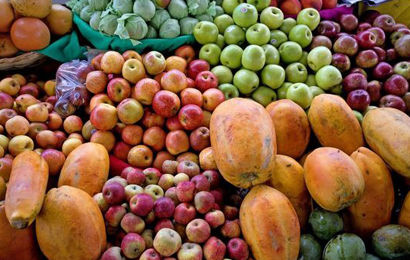 Fruits that can be used for fruit wines