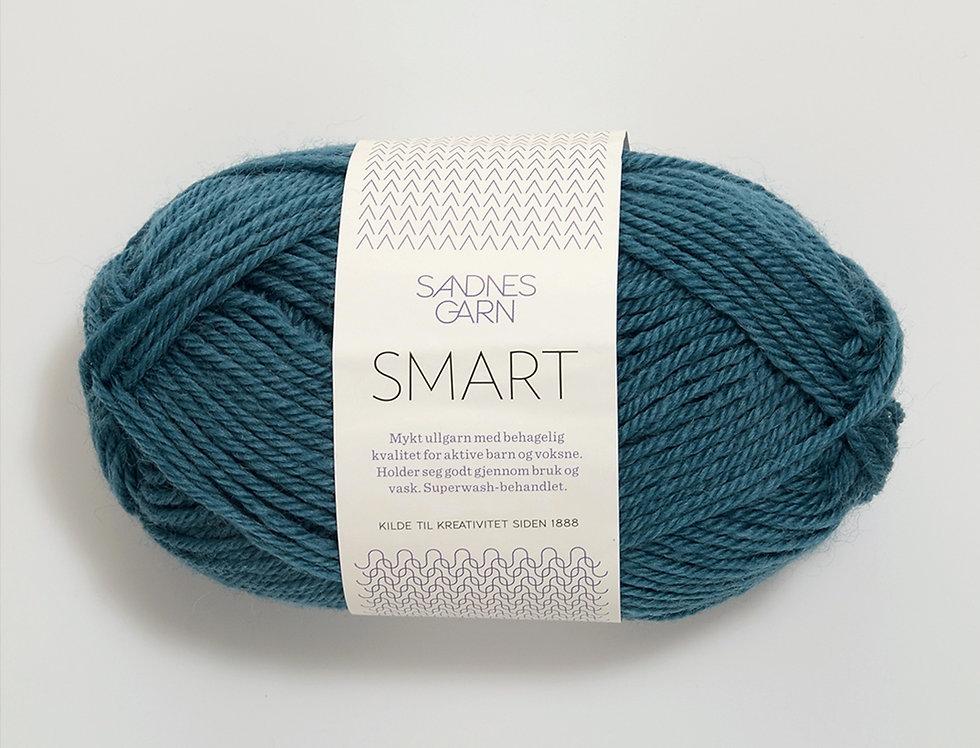 Smart 6545