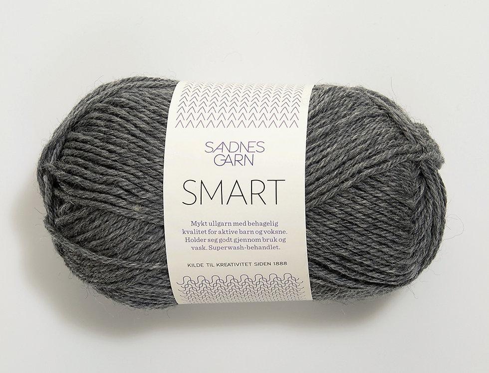 Smart 1053