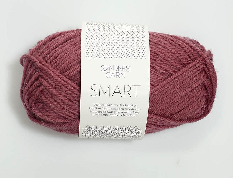 Smart 4244