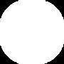 TIS_Logo(white).png