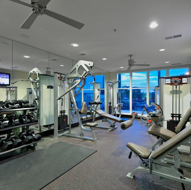 Millennium SE - Fitness