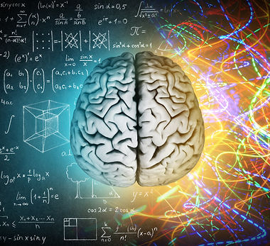 The concept of the human brain. The right creative hemisphere versus the left logical hemi