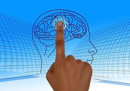 brain-770044_1280.jpg