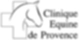 Logo clinique de Saint Cannat.png