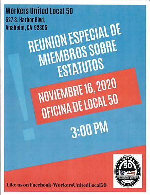 Spanish 11.16.20 Special Bylaws Meeting.