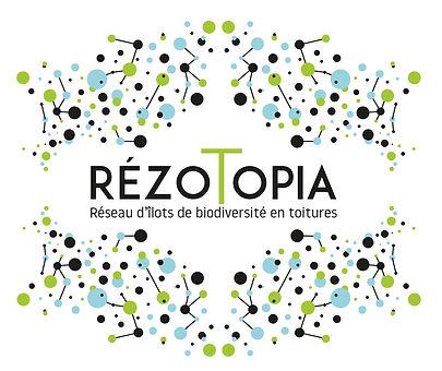 Rezotopia.quadri.jpg