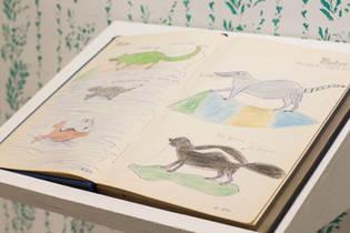 cuaderno_acción_copiar_dibujos_del_Nono