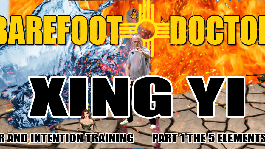 Barefoot Doctor's Xing Yi The Five Elements Training