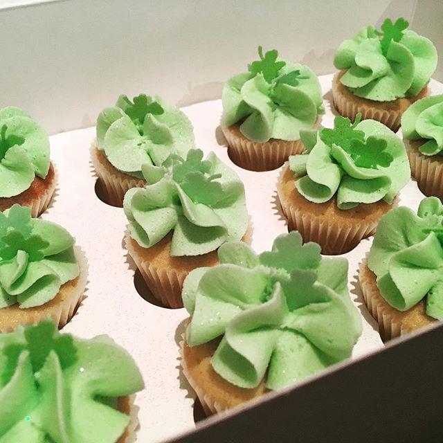 St Patrick's day minis 💚☘️