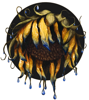 sunflower1_edited.png