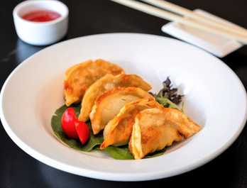 Dumplings%20with%20chicken%20and%20veget