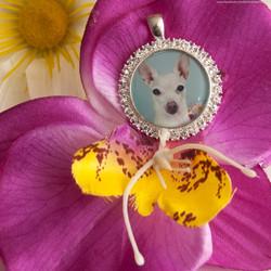 Diamond Studded Pet Photo Pendant