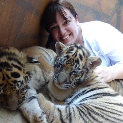 Shelley Wylie with Baby Tiger Cubs
