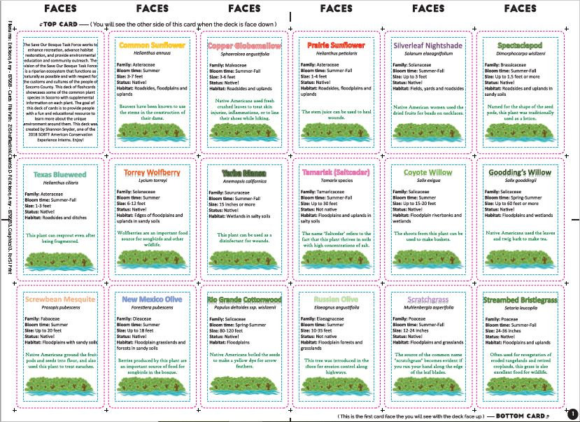 Flashcards front proof.JPG