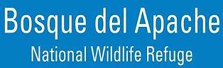 Bosque del Apache.jpg