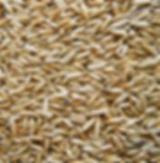 crimped-oats-1.jpg