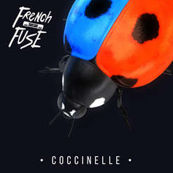 French Fuse - Coccinelle
