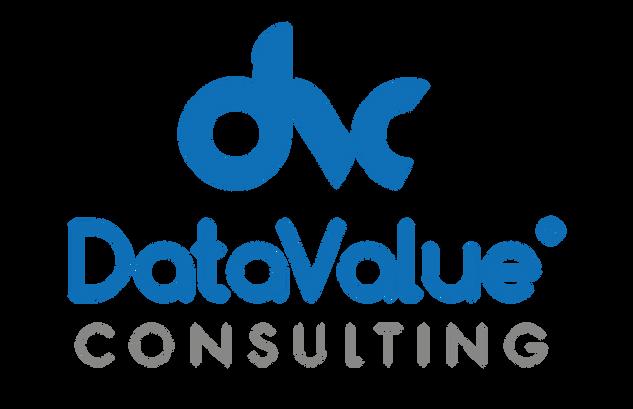 Data Value Consulting