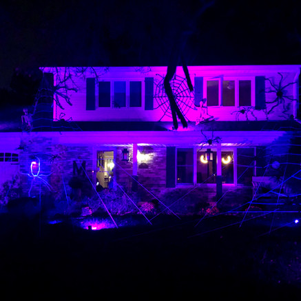 60 Redstart Road: Spooktacular House of the Day!