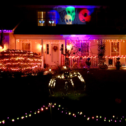 2436 Putnam Dr: Spooktacular House of the Day!