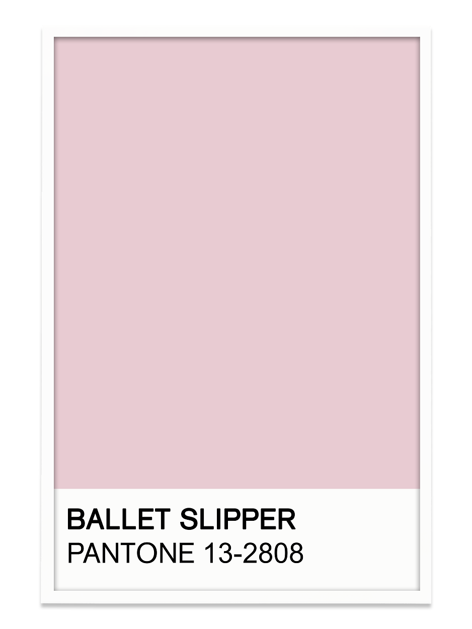 Image result for ballet shoe pink pantone