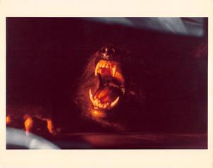 the_howlingscene_stills-color-012.jpg