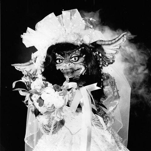 Kiss My Bride