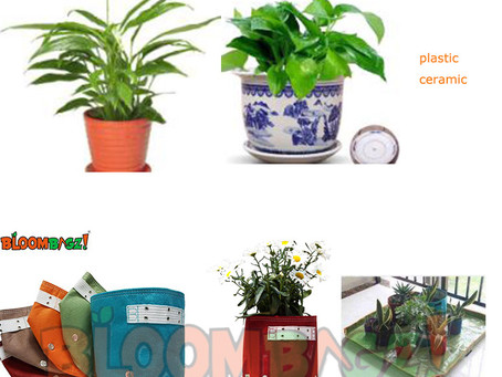 Ceramic Planters and Fashion Fabric Planters Comparison
