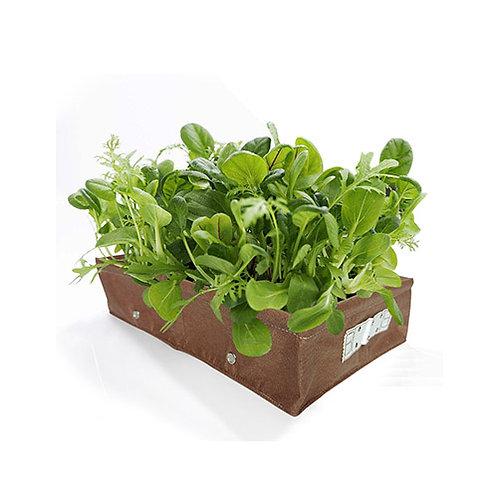 Raised Bed Vegetable Rectangle Planter
