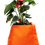 Thumbnail: BloomBagz Table Flower bag Quadrilateral or Hexagon 3 in one