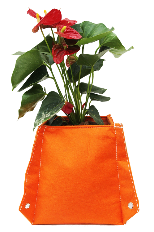 BloomBagz Table Flower bag Quadrilateral or Hexagon 3 in one