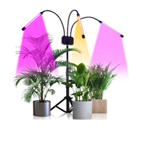 Growing Led With Floor Stand