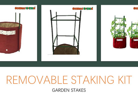 The Family Tomato Removable Staking Kit