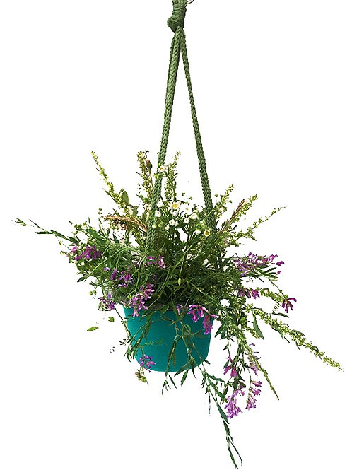 BloomBagz Hanging Planer  Product ID: POT2-H