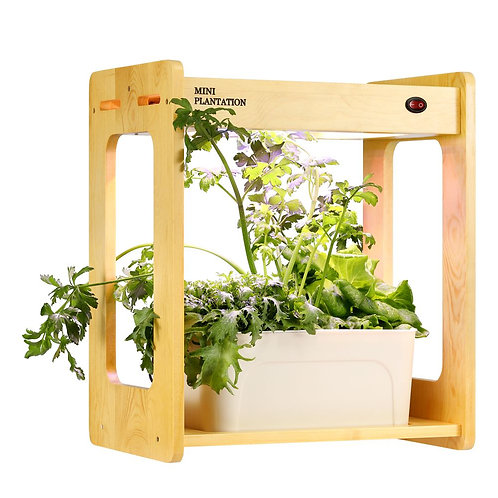 Mini  Led Garden Planter Wooden Frame